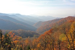 Great Smokies