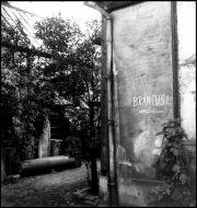 Studio di Constantin Brancusi, Parigi, 1946
