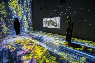 """Transcending Boundaries"" by TeamLab"