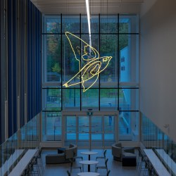 Ravenous Appetite and Boundless Energy, 2020, 75 linear feet of 18mm hand drawn colored lead free glass tubing filled with 75% argon and 25% neon, 28 x 10 x 7.5 feet. Permanent Collection, Town of Oakville, Ontario