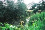 River Cherwell, Kidlington