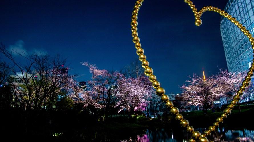 桜2016~六本木・毛利庭園~