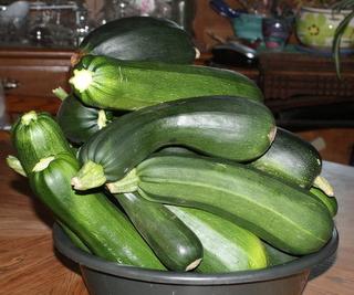 Zucchinis Gone Wild