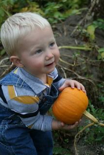 Baby_pie_pumpkin