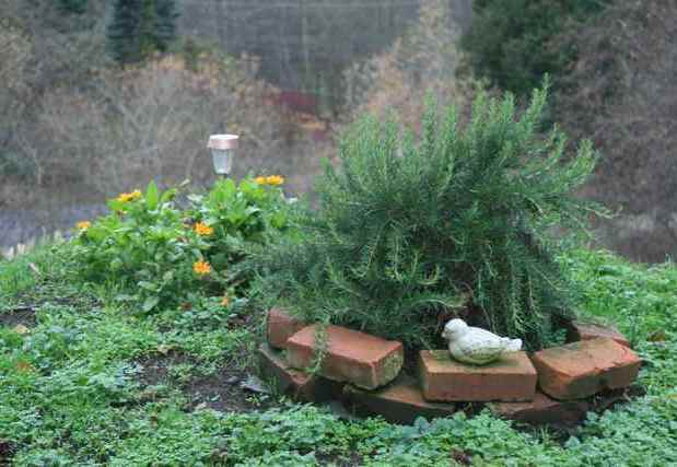 A Memorial Garden Sanctuary