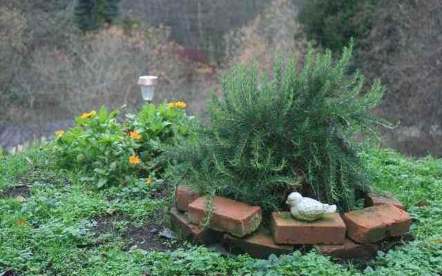 A Memorial Garden Sanctuary