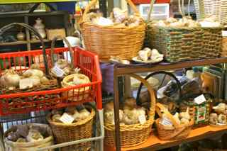 baskets of garlic