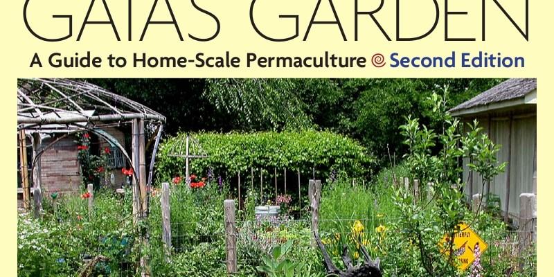 Garlic Planting Conundrums, Part 2