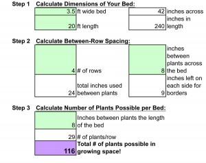 Garlic Planting Planner Excerpt