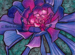 """""""Strange & Beautiful"""" 6.25 ×4.5 in, Colored Pencil, Watercolor and Inkon Strathmore Mixed Media Paper 2015. All images copyright Barb Sotiropoulos. All Rights Reserved. (Prints Available)"""