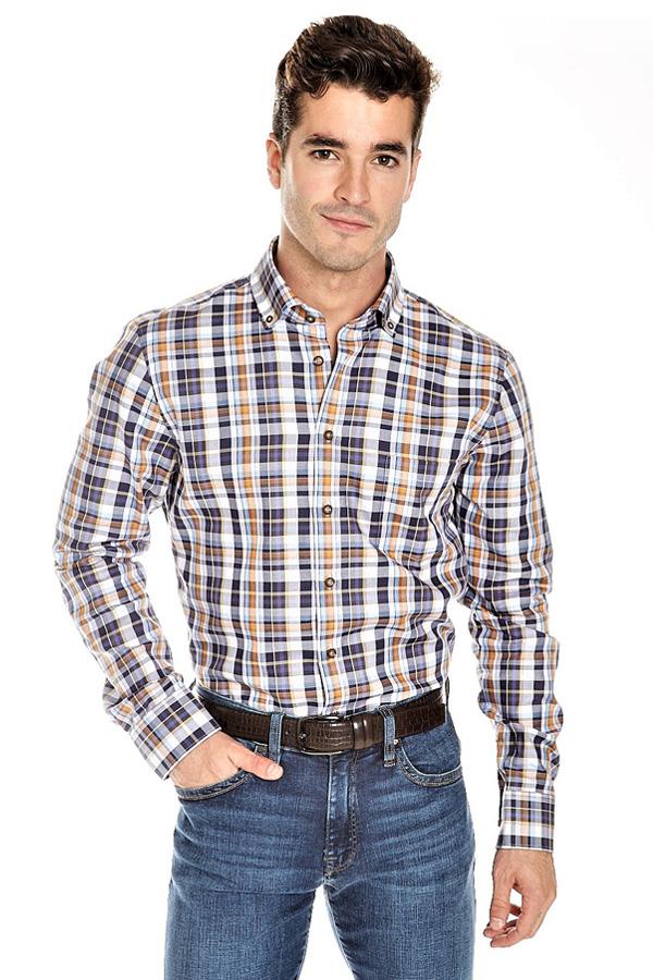 Haupt-Pure Cotton, button-down sport shirt