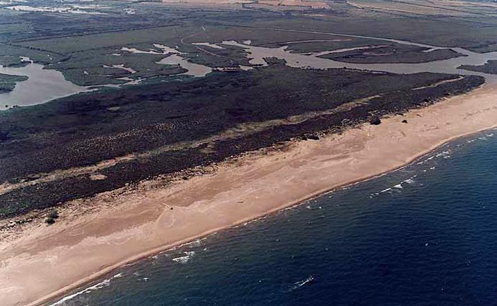 playa de Can Comes in Castelló d'Empuries