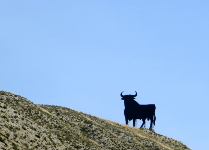 spain-osborne-bulls