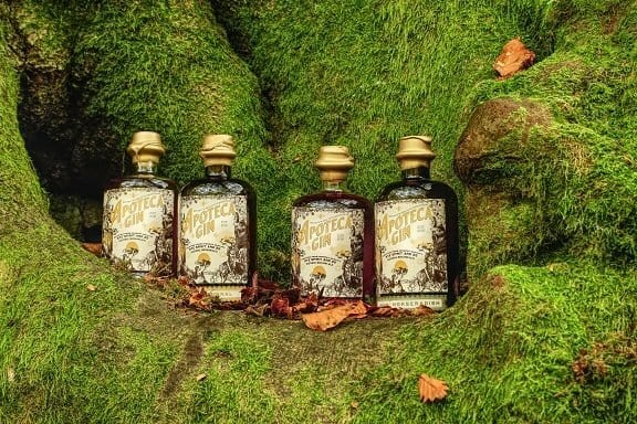 Four apoteca gin bottles on green moss in a wood