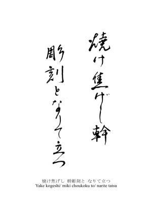 Haiku Gustavo Vega 3