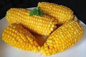 Corn ingredient for Biobased biodegradable plastics