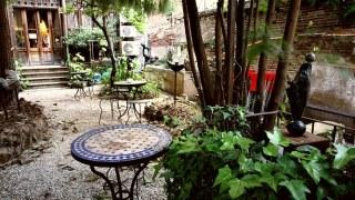 terraza olokuti