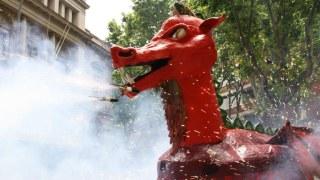dragonpoblenou2