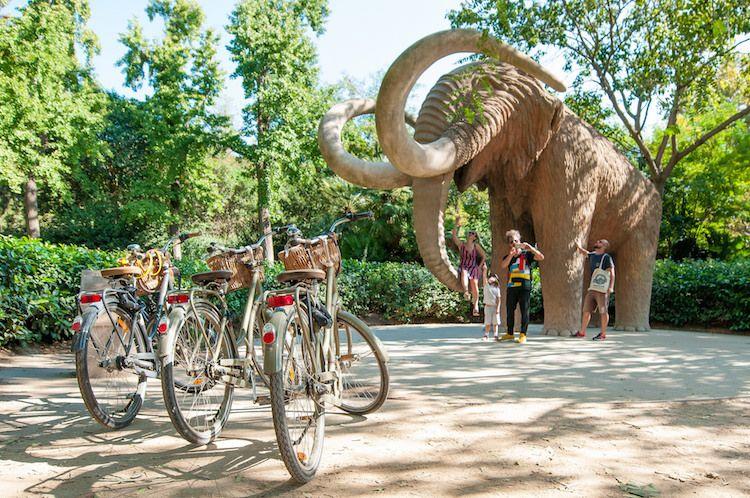 gezin tijdens fietstour bij mammoet