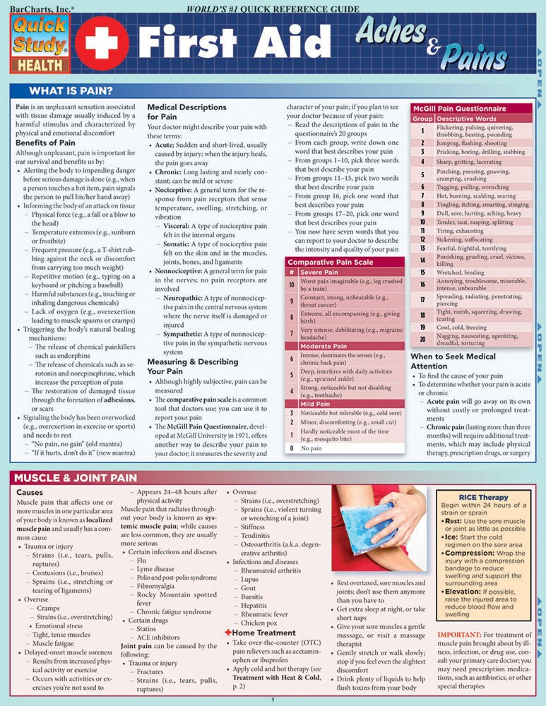 Quick Study QuickStudy First Aid Aches & Pains Laminated Study Guide BarCharts Publishing Inc Health Cover Image
