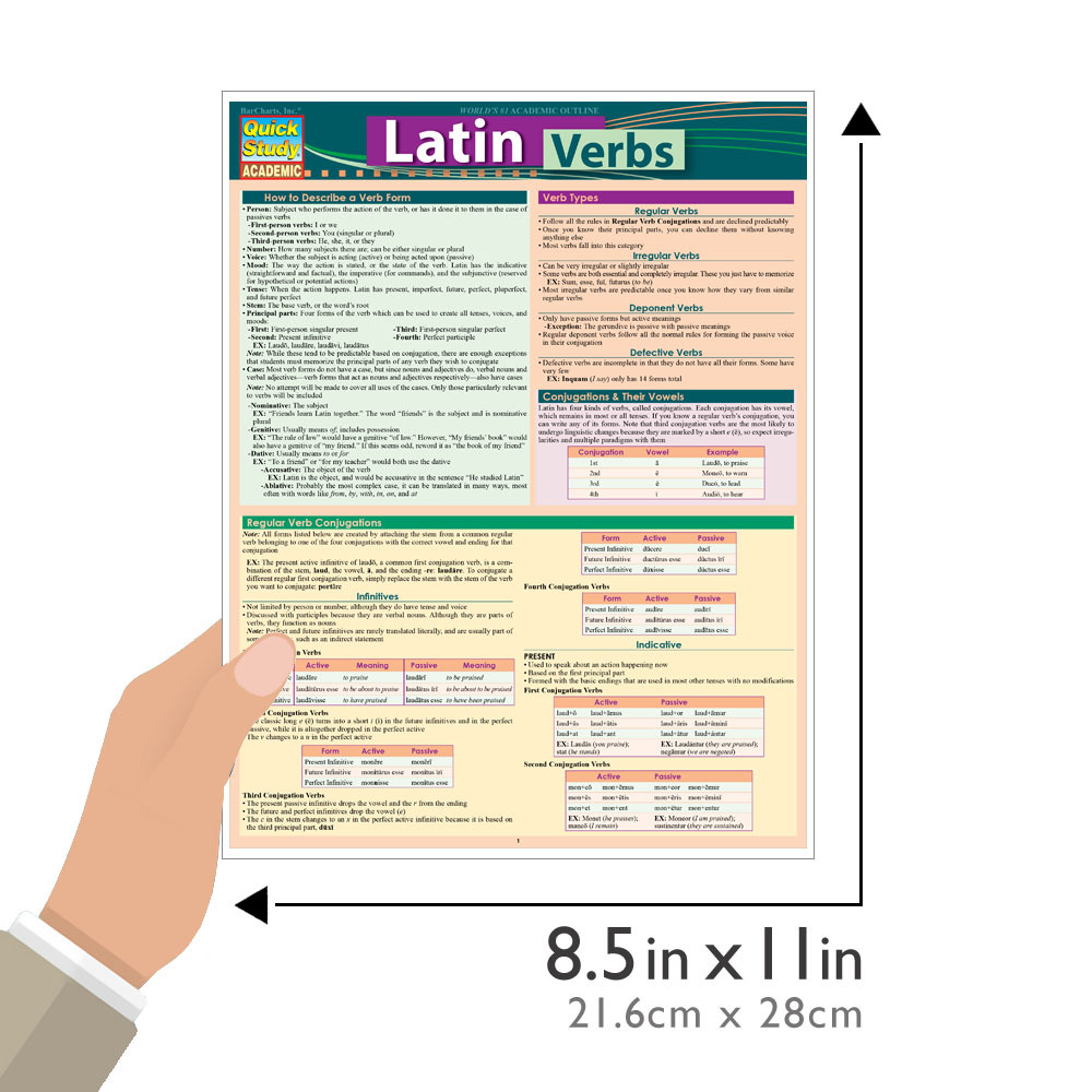 Quick Study QuickStudy Latin Verbs Laminated Study Guide BarCharts Publishing Foreign Language Guide Guide Size