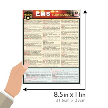 Quick Study QuickStudy Emergency Medical Services (EMS) Terminology Laminated Reference Guide BarCharts Publishing Medical Career Reference Guide Size
