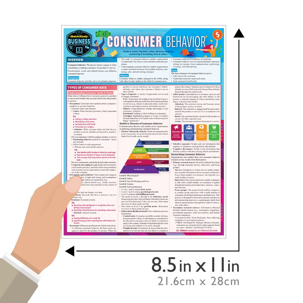 Quick Study QuickStudy Consumer Behavior Laminated Reference Guide BarCharts Publishing Business Marketing Guide Size