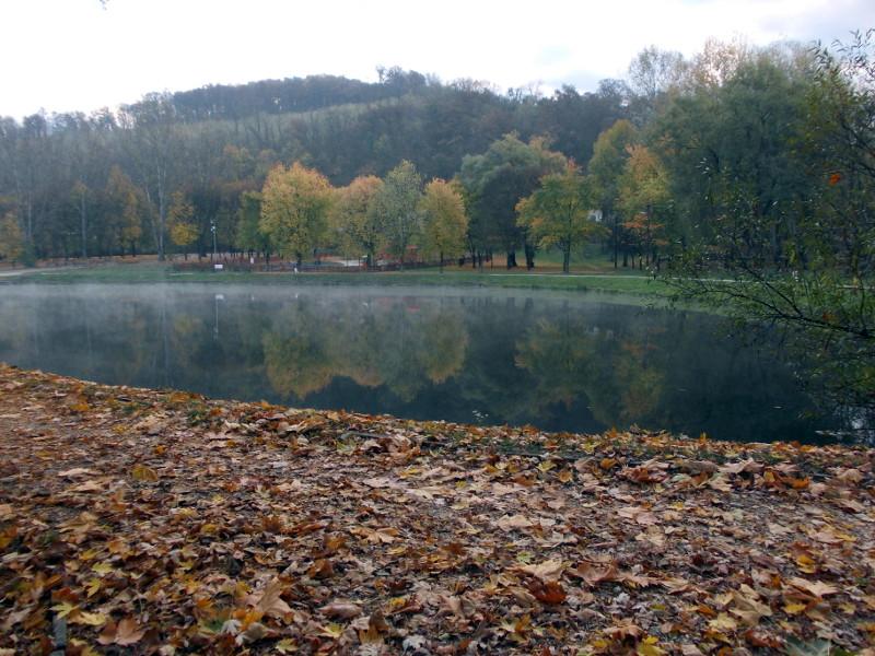 Vadregényes túra Kazincbarcikán