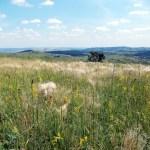 A kazincbarcikai természetjárás története* – A turizmus fejlesztésének lehetőségei