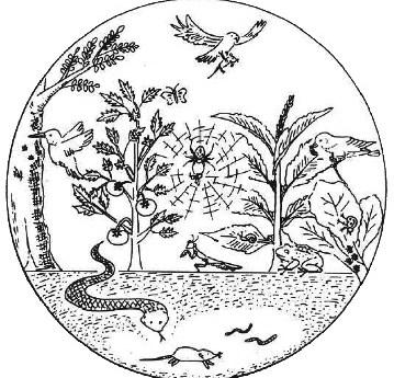 প্রাণবৈচিত্র্য ও উৎপাদনশীলতা