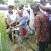 বজ্রপাত প্রতিরোধে জেলা প্রশাসকের তালগাছ রোপণ