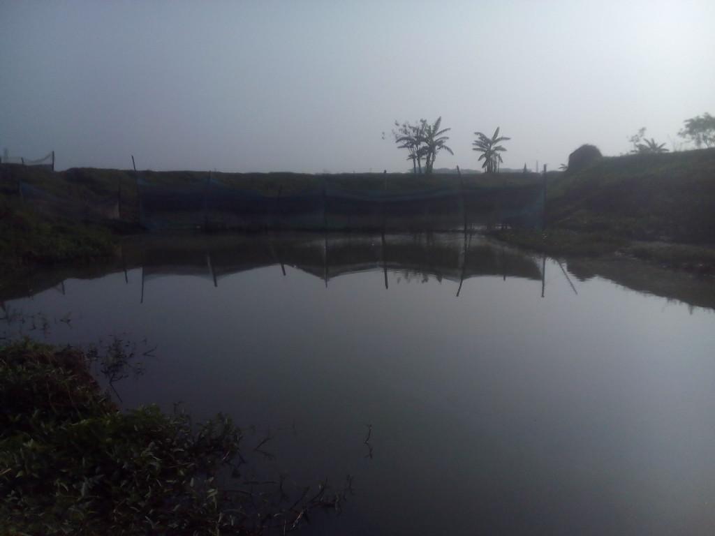 Maskhula Canal 5