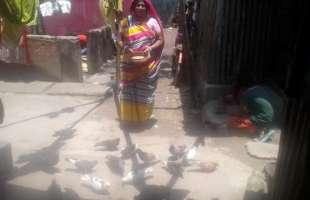 মিনতি রানী বাসফোর চকপাড়া হরিজন পল্লীর আলোকবর্তিকা