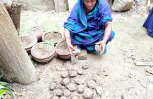 বন্যা মোকাবেলায় জয়তন বেগমের লোকায়ত জ্ঞান চর্চা