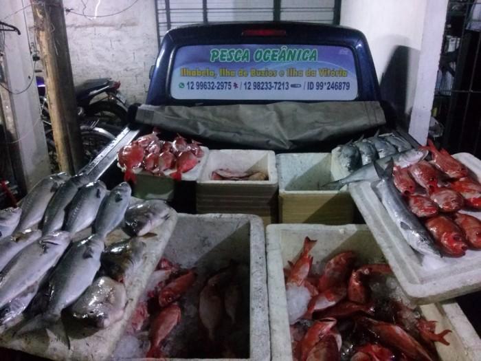 resultado-da-pescaria-dominic-barco