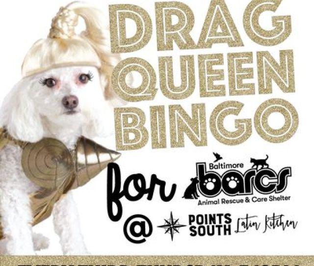 Drag Queen Bingo For Barcs