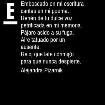 Alejandra Pizarnk, Poesía en bardulias
