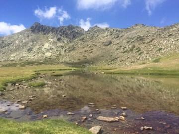 Poesía en Bardulias: El Monte nunca Olvidó
