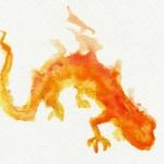 Poesía en Bardulias: Salamandra