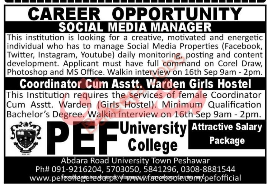 PEF University College Jobs September 2021