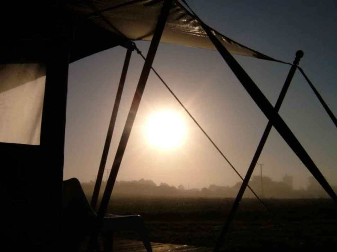 the morning sunshine in the mist from Hobie the safari tent at barefoot glamping Cornwall