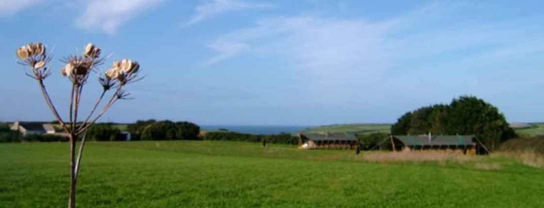 looking at woody and Hobie safari tent from the far side of the meadow with the sea in the background cornwall