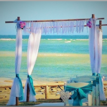 Beach wedding arbour with peonies - Happy Valley, Caloundra