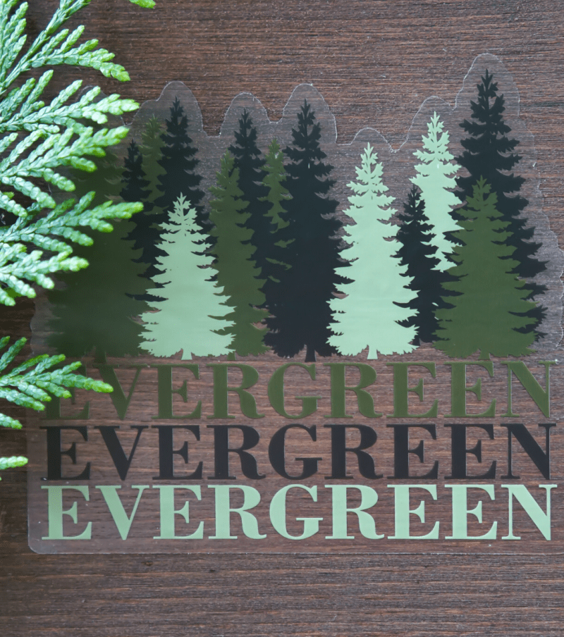 Evergreen Decal Shop Image