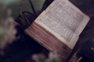 Thoughts on Psalm 100