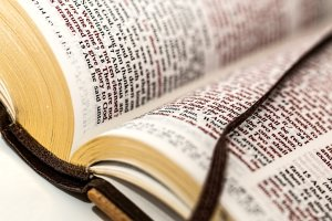 Thoughts on Psalm 1 & 2