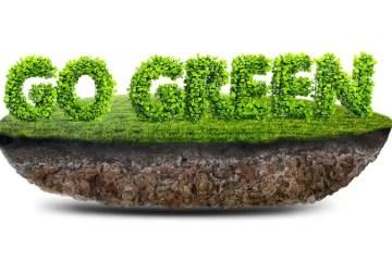 Earth Friendly Lawn Care
