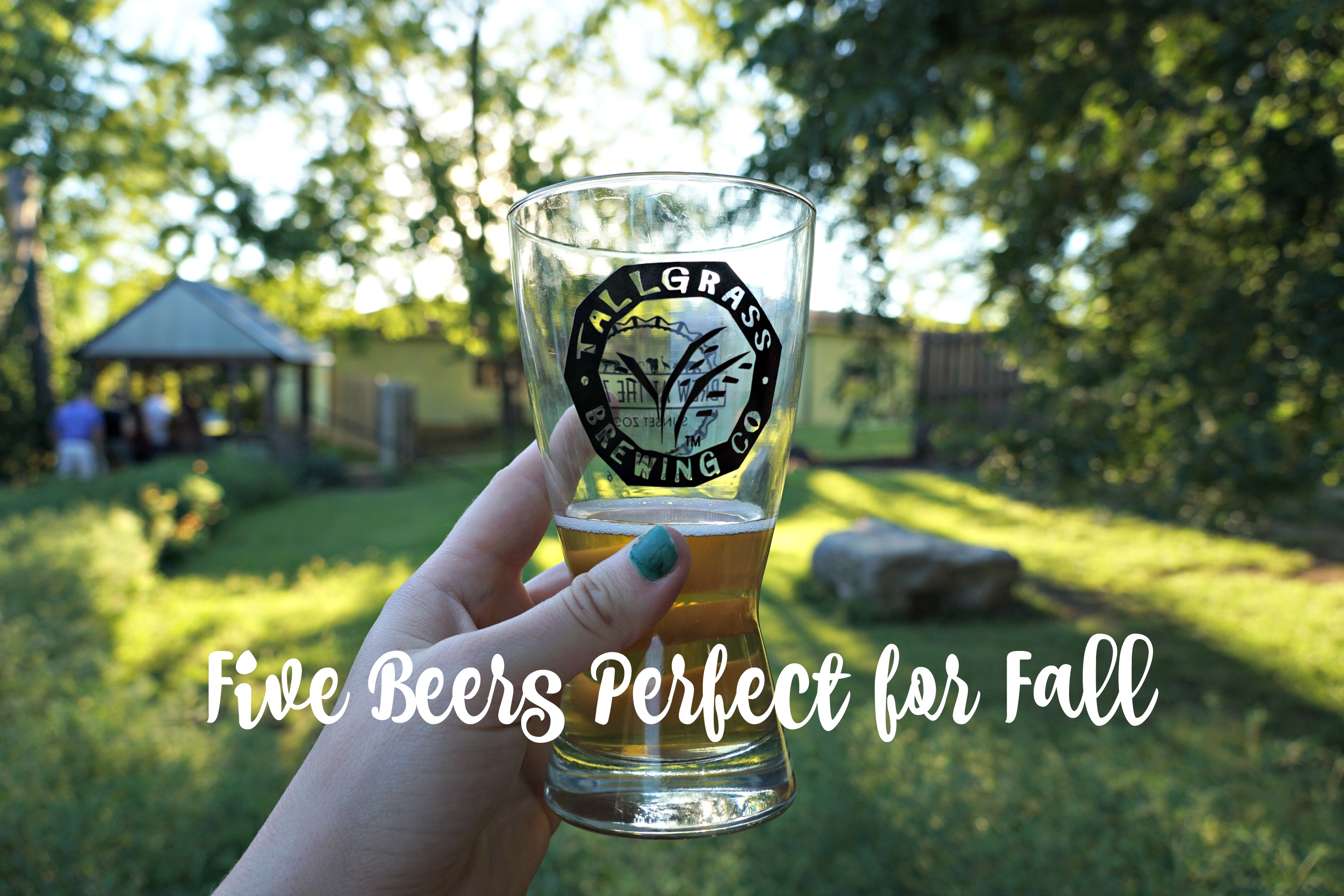 Cheers to Fall: Five Local Craft Brews Perfect for the Season