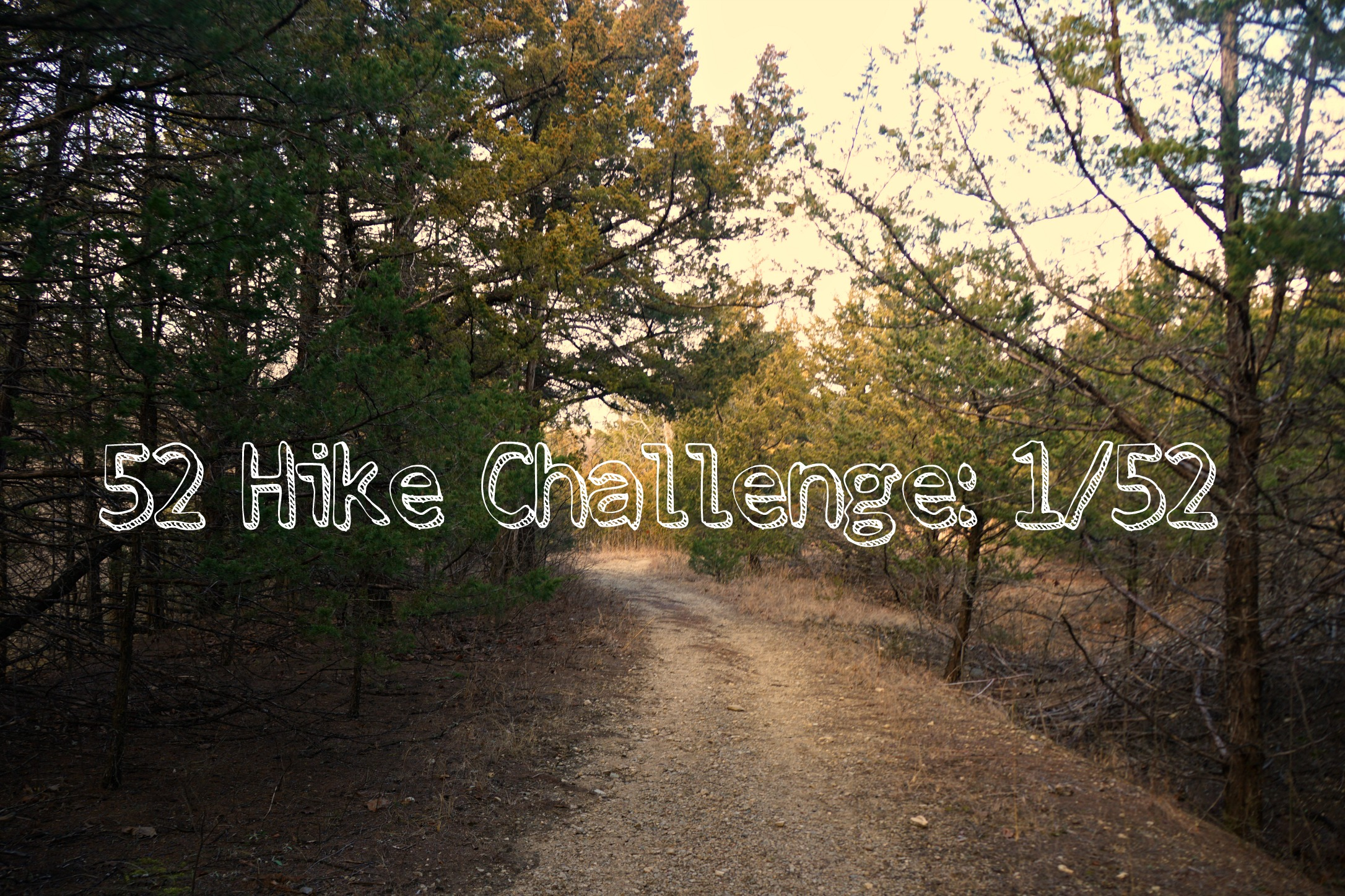 First Day Hike: Milford State Park