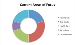 Barenberg Capital Partners. Areas of Focus